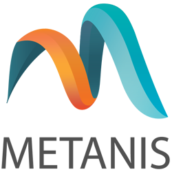 Metanis Consulting